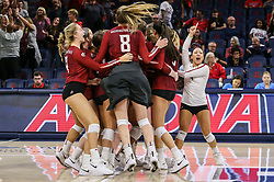 October 7, 2018 - Tucson, AZ, U.S. - TUCSON, AZ - OCTOBER 07: Washington State Cougars celebrates a win during a college volleyball game between the Arizona Wildcats and the Washington State Cougars on October 07, 2018, at McKale Center in Tucson, AZ. Washington State defeated Arizona 3-2. (Photo by Jacob Snow/Icon Sportswire) (Credit Image: © Jacob Snow/Icon SMI via ZUMA Press)