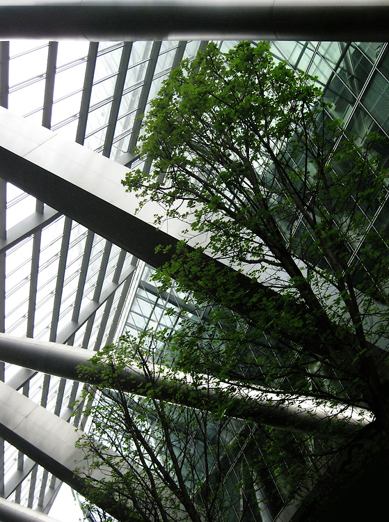 Silver and Green.<br /> Everyday I walk past the atrium of the Bishopsgate Tower with its leafy green trees contrasting against the shiny silver of the tower.