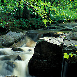Stratton, VT. Water cascades down the rocks of Broad Brook in Vermont's Green Mountains.