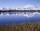 Large Format Photos, Denali National Park