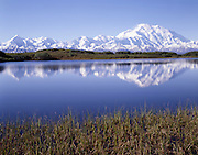 Lake, Pond, reflection, Summer, Mt. McKinley, Mount McKinley, Denali, Denali National Park, National Park, Alaska, Alaska Range