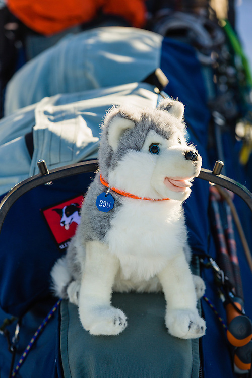 Nicholas Petit's stuffed sled dog sits atop the sled before the restart of the 42nd Iditarod Trail Sled Dog Race on Willow Lake in Southcentral Alaska.  Afternoon. Winter.