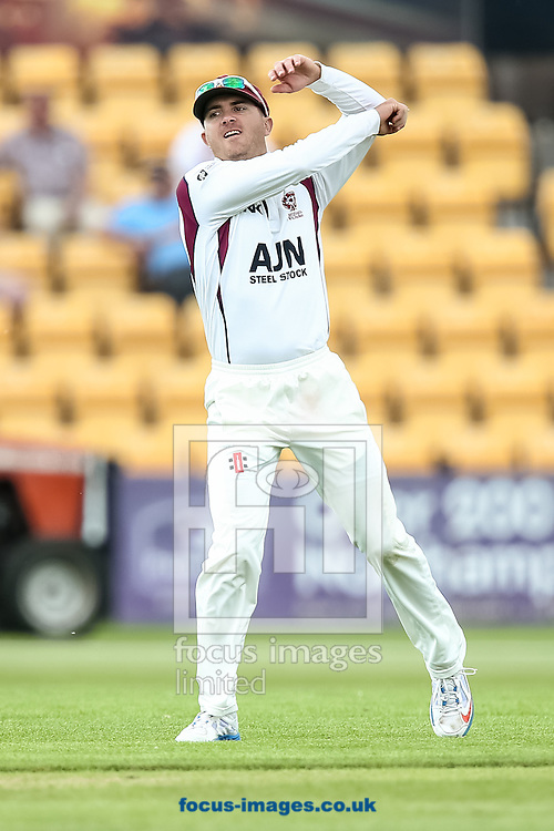 Stephen Peters of Northamptonshire County Cricket Club during the LV County Championship Div One match at the County Ground, Northampton, Northampton<br /> Picture by Andy Kearns/Focus Images Ltd 0781 864 4264<br /> 01/06/2014
