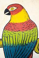 Bird Shops.