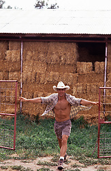 cowboy opening a gated area with bales of hay