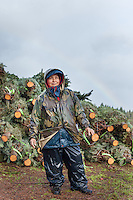 reyna reyes, christmas tree farm worker <br /> Corvallis, Oregon