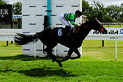 Just May ridden by Hollie Doyle and trained by Clive Cox in the Ebf Maiden Stakes (Class 5) race. - Ryan Hiscott/JMP - 07/08/2019 - PR - Bath Racecourse - Bath, England - Race Meeting at Bath Racecourse