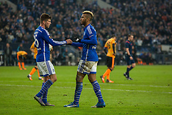 26.11.2015, Veltins-Arena, Gelsenkirchen, GER, UEFA EL, Schalke 04 vs Apoel Nikosia, Gruppe K, im Bild Klaas-Jan Huntelaar (FC Schalke 04 #25) und Torschuetze Eric Maxim Choupo-Moting (FC Schalke 04) beim Torjubel nach dem Treffer zum 1:0 // during UEFA Europa League group k match between Schalke 04 and Apoel Nikosia at the Veltins-Arena in Gelsenkirchen, Germany on 2015/11/26. EXPA Pictures © 2015, PhotoCredit: EXPA/ Eibner-Pressefoto/ Schueler<br /> <br /> *****ATTENTION - OUT of GER*****