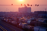 Pigeons gather on an overhead wire above Union Pacific's giant Proviso freight yard in suburban Chicago as the sun sets on a warm summer day.