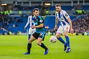 Wes Hoolahan (West Brom) & Dale Stephens (Brighton) during the FA Cup fourth round match between Brighton and Hove Albion and West Bromwich Albion at the American Express Community Stadium, Brighton and Hove, England on 26 January 2019.