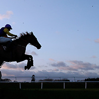 Ballinhassig jumping the last in the 3.20 race