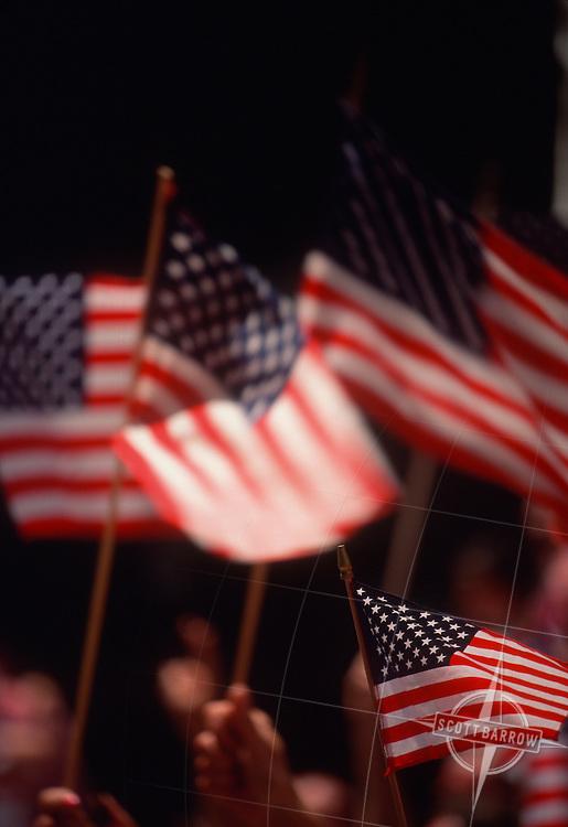 American Flags, 1991