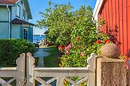 Hus med rosor i trädgården  och grind i Sandhamn i Stockholms skärgård