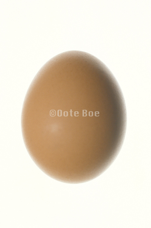 a floating brown egg