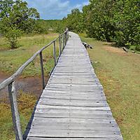 Muelle Posada Tortuga Lodge en la Playa Miami en el Parque Nacional Laguna de Tacarigua. Edo. Miranda, Venezuela. Tacarigua, 21 de Mayo del 2012. Jimmy Villalta