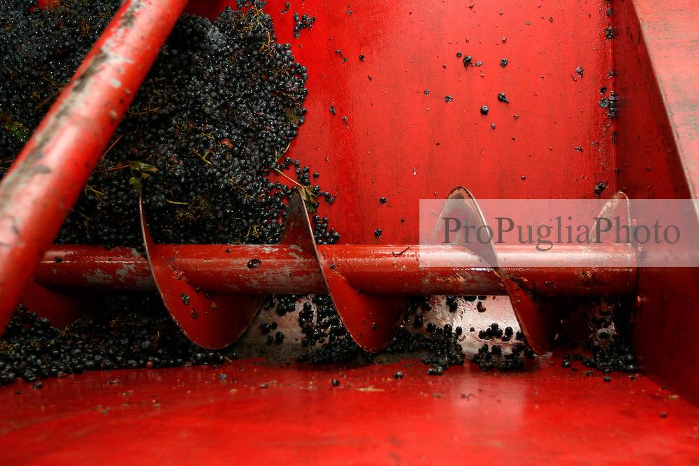 """Questa macchina in gergo serve per trasportare l'uva verso la spremitura, ma per i contadini viene comunemente chiamata """"carolla""""."""