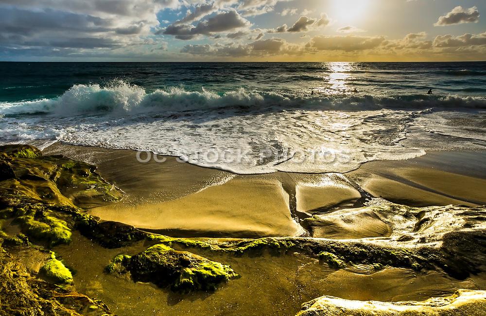 Surfers At Windansea Beach At Sunset