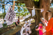 Messages with ideas, from children and adults, on ways to save or improve the planet - the Faraway Forest - The 2018 Latitude Festival, Henham Park. Suffolk 14 July 2018