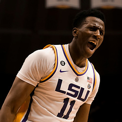 Feb 2, 2019; Baton Rouge, LA, USA; LSU Tigers forward Kavell Bigby-Williams (11) reacts after a dunk against the Arkansas Razorbacks during the first half at the Maravich Assembly Center. Mandatory Credit: Derick E. Hingle-USA TODAY Sports