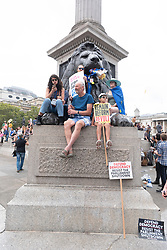 © Licensed to London News Pictures. 31/08/2019. London, UK. Protesters take part in a demonstration in Trafalgar Square against British Prime Minister Boris Johnson's plan to suspend Parliament until October 14th. Opponents of the Prime Minister suggest the move is to reduce the time available for MP's to stop a no deal Brexit.Photo credit: Ray Tang/LNP