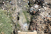 A drain from a local paper mill is pouring wastewaters back into the surrounding environment by the banks of the Kali river (East) in Jaibheem Nagar, pop. 10000, a large slum located near Meerut District, Uttar Pradesh, India, on Sunday, Mar. 16, 2008.