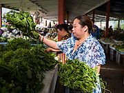 03 AUGUST 2019 - ST. PAUL, MINNESOTA: A vegetable stand keeper puts out fresh vegetables at the farmers' market at Hmongtown Marketplace. Thousands of Hmong people, originally from the mountains of central Laos, settled in the Twin Cities in the late 1970s and early 1980s. Most were refugees displaced by the American war in Southeast Asia. According to the 2010 U.S. Census, there are now 66,000 ethnic Hmong in the Minneapolis-St. Paul area, making it the largest urban Hmong population in the world. There are two large Hmong markers in St. Paul. The Hmongtown Marketplace has are more than 125 shops, 11 restaurants, and a farmers' market in the summer. Hmong Village is newer and has more than 250 shops and 17 restaurants.    PHOTO BY JACK KURTZ