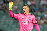 February 8, 2017: Sydney FC goalkeeper Danny VUKOVIC (20) at Round 19 of the 2017 Hyundai A-League match, between Sydney FC and Wellington Phoenix played at Allianz Stadium in Sydney. Sydney FC won the game 3-1.