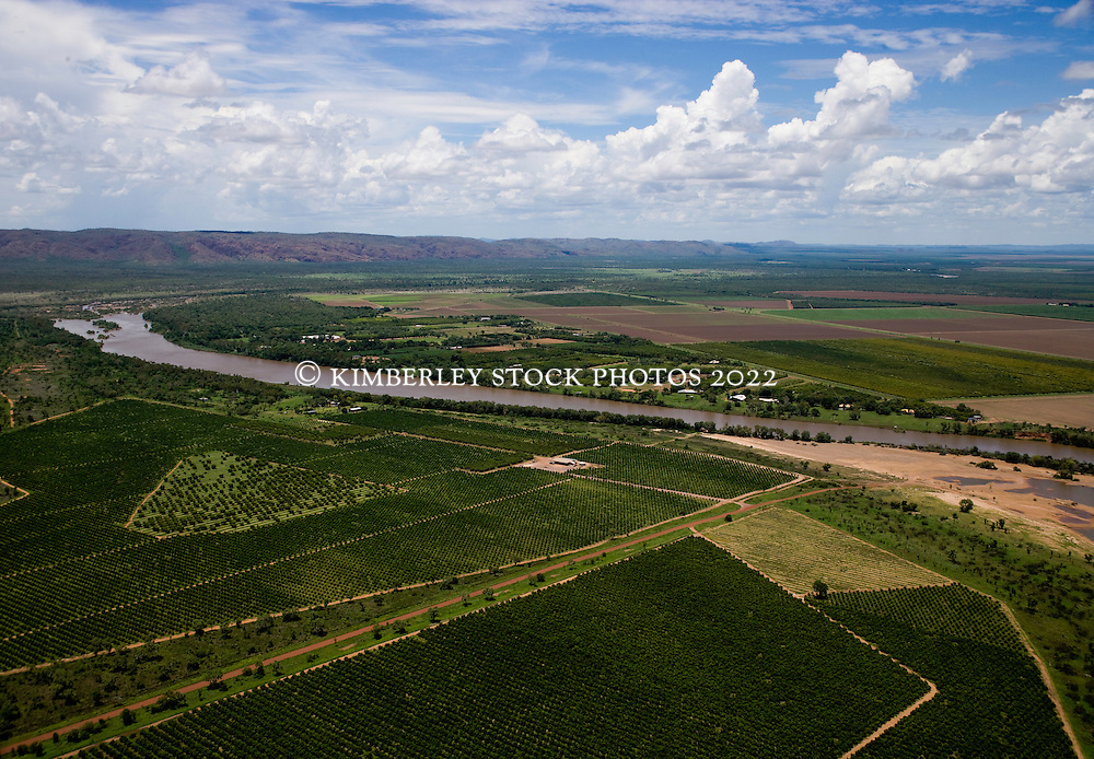 A patchwork of fields in the Ord Irrigation Area on the outskirts of Kununurra in the Kimberley wet season.
