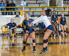 2017 A&T Volleyball vs Bethune-Cookman