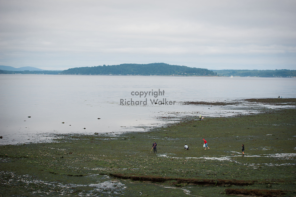 2013 July 22 - People explore along the shore of Alki Beach near Me Kwa Mooks Park, Seattle, WA, during low tide. By Richard Walker
