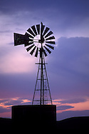 Hawk on top of rural windmill next to wooden water tank at sunset, Merced Grasslands, Central Valley, California