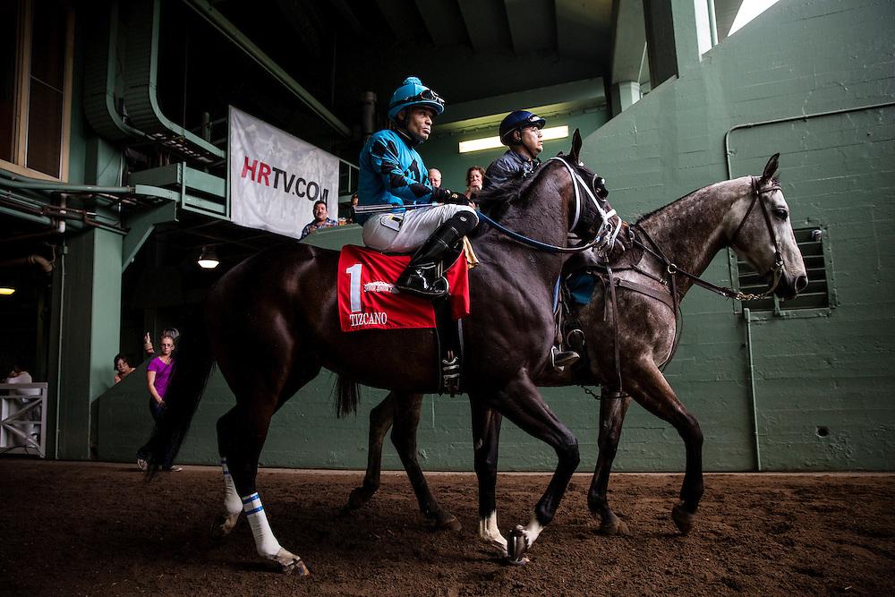 February 07 2015: Tizcano at the Bob Lewis Stakes at Santa Anita Park in Arcadia CA. Alex Evers/ESW/CSM`