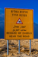 Beware of Camels Near Road sign, Negev Desert, Israel.