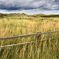Fence and Dune Grasses under a Dark Sky near Amble Northumberland England