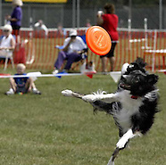 2007 - Doggie Dash 'n Splash