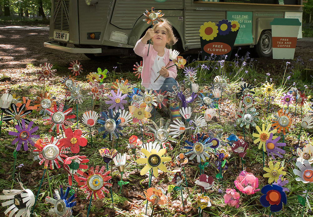 """© Licensed to London News Pictures. <br /> **EMBARGOED UNTIL 00.01am MONDAY 15 MAY, 2017**. Forest of Dean, Gloucestershire, UK. """"Please don't leaf it behind!"""" Grace Bell (5) contemplates flowers made from rubbish collected in the Forest of Dean, part of a new behaviour change campaign by Hubbub to tackle the rural litter epidemic. www.hubbub.org.uk/trashconverter. Trash Converters launch in the Forest of Dean, with a display of flowers created from waste, and with a van that gives out free drinks and snacks in exchange for rubbish that people find and bring to convert. For further details about the launch on 15 May please contact:<br /> Rachel Parkes0777 565 2919 / rachel.parkes@greenhousepr.co.uk<br /> Helen Bell07880 560 233 / helen.bell@greenhousepr.co.uk <br /> Picture credit : Simon Chapman/LNP"""