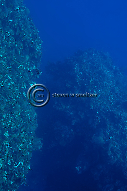 Scuba Diving, Grand Cayman, Andes Wall