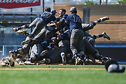 Birmingham players celebrate after the final out during the LA City Division I baseball championship against the Chatsworth at Dodger Stadium on Saturday, June 3, 2017 in Los Angeles. Birmingham won 4-3.
