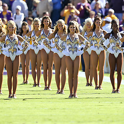 November 6, 2010; Baton Rouge, LA, USA; The LSU Tigers Golden Girls dance team perform on the field prior to kickoff of a game against the Alabama Crimson Tide at Tiger Stadium.  Mandatory Credit: Derick E. Hingle
