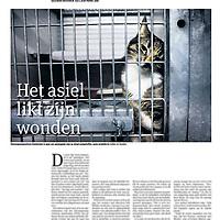 Tekst en beeld zijn auteursrechtelijk beschermd en het is dan ook verboden zonder toestemming van auteur, fotograaf en/of uitgever iets hiervan te publiceren <br /> <br /> Parool 14 december2013: dierenasiel gereorganiseerd