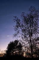 Late Fall Waxing Cresent Moon at Dusk. Image taken with a Leica X2 Camera (ISO 800, 24 mm, f/2.8, 1/60 sec)