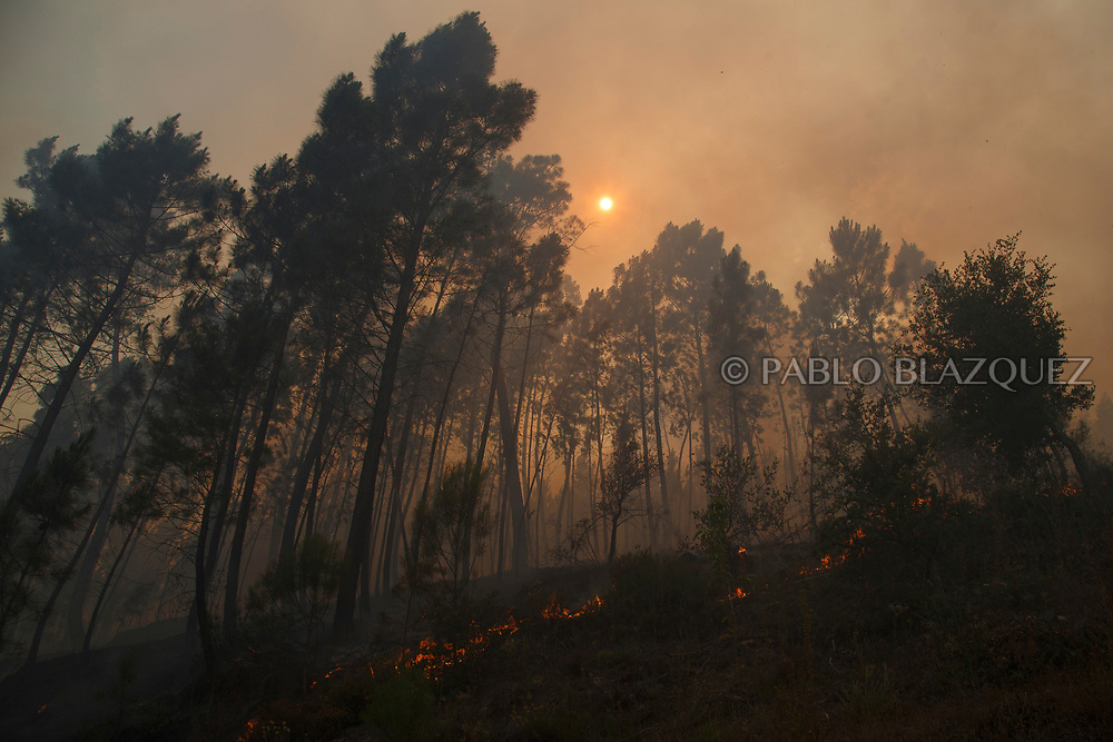 LEIRIA, PORTUGAL - JUNE 18:  The sun is seen behind flames approaching to Mega Fundeira village after a wildfire took dozens of lives on June 20, 2017 near Picha, in Leiria district, Portugal. On Saturday night, a forest fire became uncontrollable in the Leiria district, killing at least 62 people and leaving many injured. Some of the victims died inside their cars as they tried to flee the area.  (Photo by Pablo Blazquez Dominguez/Getty Images)