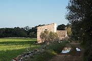 Feldweg, Haus bei Arta, Mallorca, Balearen, Spanien.|.track, cottage near Arta, Mallorca, Spain...