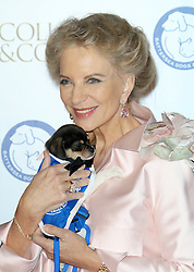 © Licensed to London News Pictures. 07/11/2013.  Princess  Michael of Kent attending the Battersea Dogs & Cats Home Collars & Coats Gala Ball at Battersea Evolution, London UK. Photo credit: by Richard Goldschmidt/LNP