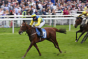 POETS DAWN (11) ridden by David Allan and trained by Tim Easterby winning The ICE Co Supporting Macmillan Stakes over 1m 1f (£15,000)   during the MacMillan Charity Raceday held at York Racecourse, York, United Kingdom on 15 June 2019.