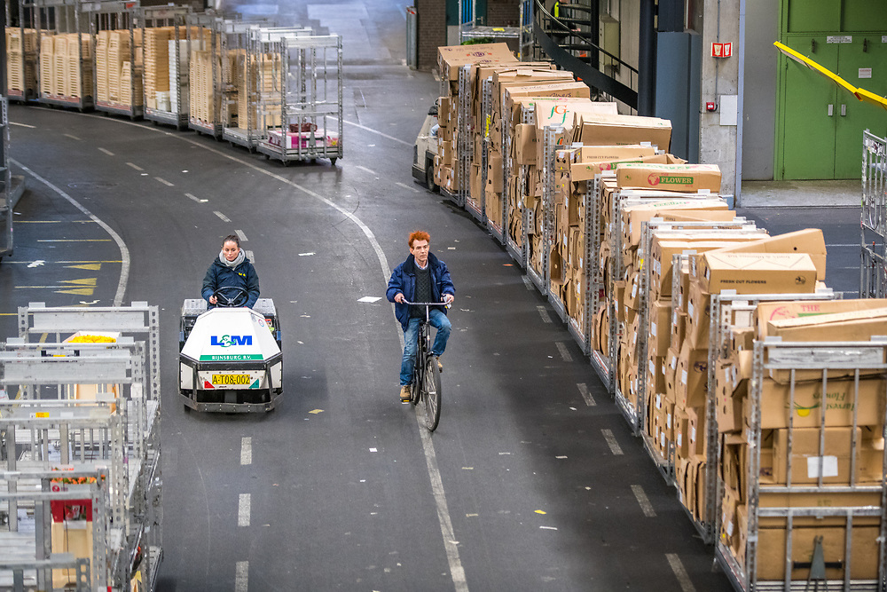 Carts of flowers being transported in a warehouse at the worlds largest flower auction, Royal Flora Holland. Amsterdam, Netherlands