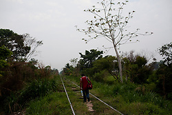 A migrant walks along the train tracks in Tenosique, Tabasco as he waits for a train to arrive that he can ride on up to the border with the United States.  The trip for these migrants, mostly from central america, has become increasingly dangerous over the past several years as Mexico's drug war has raged and kidnappings and killings of migrants has increased.