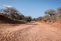 27 January 2019,  Seweyna woreda, Bale Zone, Oromia, Ethiopia: A riverbed lies dry in Seweyna woreda, near the Wada IDP site.