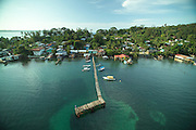 Isla Bastimentos es una isla que incluye la localidad del mismo nombre, y el corregimiento ubicado en el distrito de Bocas del Toro en el archipiélago de Bocas del Toro, al noroeste del país centroamericano de Panamá. La isla es de aproximadamente 52 km?, lo que la hace una de las más grandes en Panamá.<br /> <br /> El Parque nacional Isla Bastimentos abarca una gran parte de la isla Bastimentos, los Cayos Zapatilla, además de las aguas y los manglares que rodean a la isla, donde los monos Tití son comunes, al igual que los perezosos y las ranas venenosas rojo.<br /> <br /> <br /> ©Alejandro Balaguer/Fundación Albatros Media.
