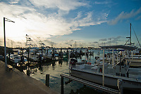 Port Aransas harbor, Mustang Island
